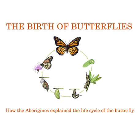 The Birth of Butterflies by Lynn Brittney